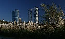 EdificiosVegetales