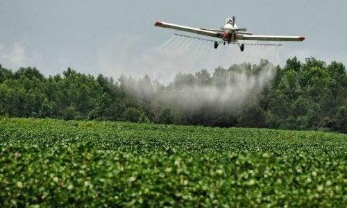 Contaminación Hormonal De Agroquímicos Y Fallo De La Justicia