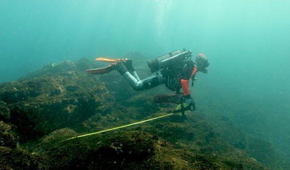Islas De Japón Esconden Claves Para La Supervivencia De Los Corales