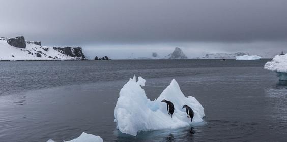 La Antártida Está Ganando Más Hielo Del Que Pierde, Dice Nuevo Estudio De La NASA