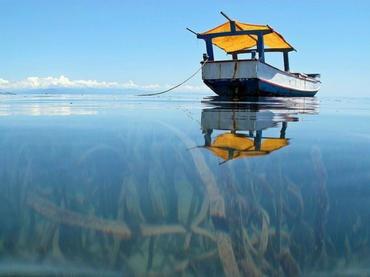 La Actividad Humana Ha Acelerado La Degradación De Los Océanos: ONU
