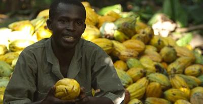 Mondelēz Se Alía Con Gobiernos De África Occidental Para Combatir La Deforestación