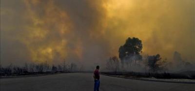 ONU: Incendios Forestales Cada Vez Más Grandes Y Más Devastadores Son Uno De Los Fenómenos Extremos Consecuencia Del Cambio Climático