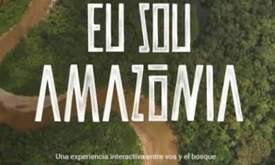 Deforestación: Google Quiere Ayudar A Nativos Amazónicos