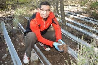Descubren Que La Flora Microbiana Del Suelo Es Vital En La Lucha Contra La Sequía En Ecosistemas Forestales