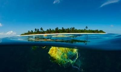 Alianza Por Los Océanos Pide Prohibir La Exploración Minera