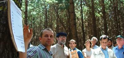 El Desafío De Los Ingenieros Forestales De Ocupar Un Rol De Liderazgo Y Conquistar La Valorización Social