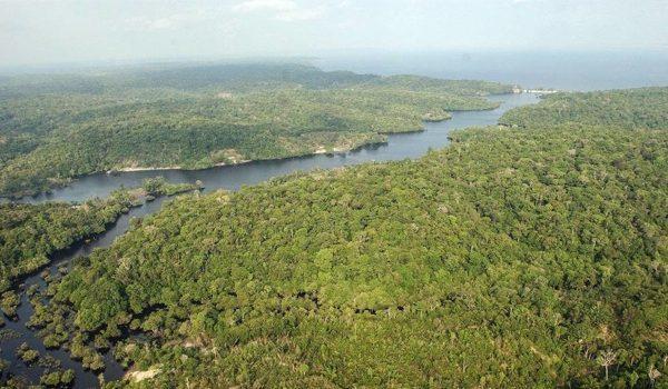La Justicia Brasileña Suspende Un Decreto De Temer Para La Explotación Minera En La Amazonia