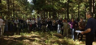 Los Ingenieros Forestales, Protagonistas Del Desarrollo Sostenible