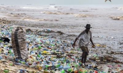 Microplásticos En El Océano Y La Ingesta Como Comida