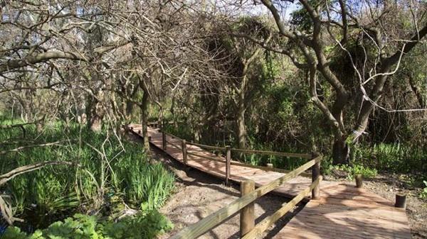 Un Predio De Villa Domínico, De Relleno Sanitario A Parque Público