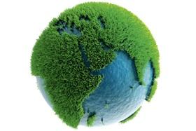 #BiogreenPlanta, Iniciativa Por El Día Del Árbol