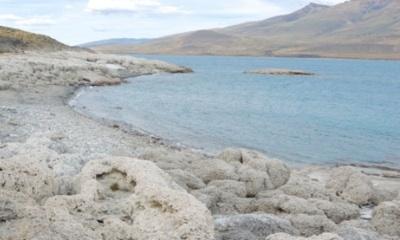 Chile Apuesta Por La Conservación De Ecosistemas Acuáticos