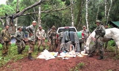 Quejas De Misiones Por La Demora De Fondos Para Bosques