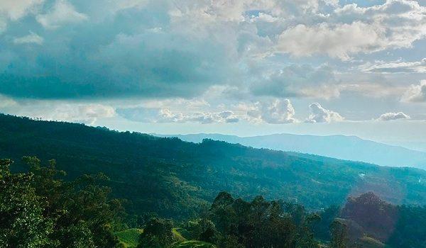 La Estrategia Que Le Paga A Los Campesinos Por Cuidar Los Ecosistemas De Colombia