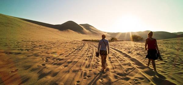 Hace Miles De Años, El Desierto árabe Era Una Abundante Selva