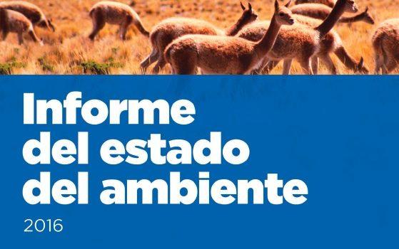 Informe Del Estado Del Ambiente 2016