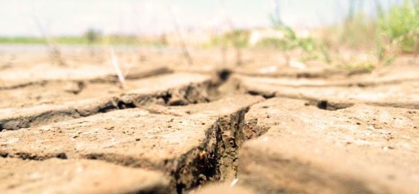 Metodología Que Ayuda A Reducir El Impacto Económico De La Sequía En La Agricultura De Regadío