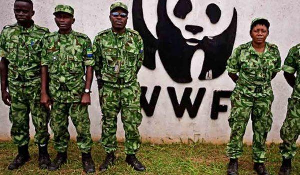 Survival Acusa A WWF De Abusos De Derechos Humanos