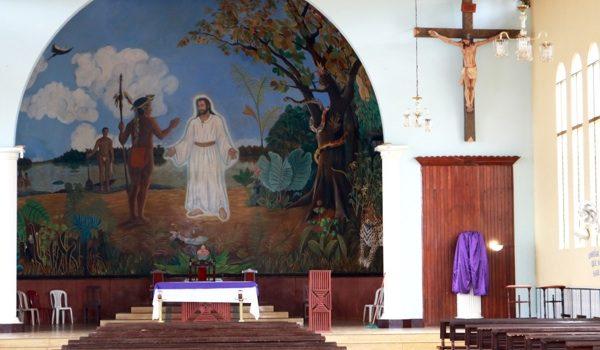 Un Plan Católico Para La Amazonia