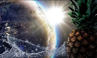 Descubrimiento Del Reloj Circadiano Aumentaría La Eficiencia Del Agua En Cultivos Agrícolas
