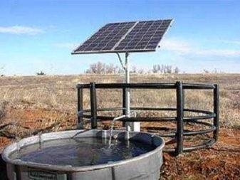 Energía Solar En Agricultura