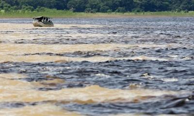 La Construcción De Hidroeléctricas Altera Los Nutrientes De Los Ríos De La Amazonía