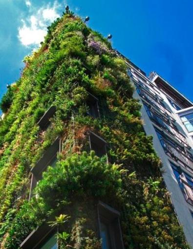 Los jardines verticales o muros verdes argentina ambiental - Muros verdes verticales ...