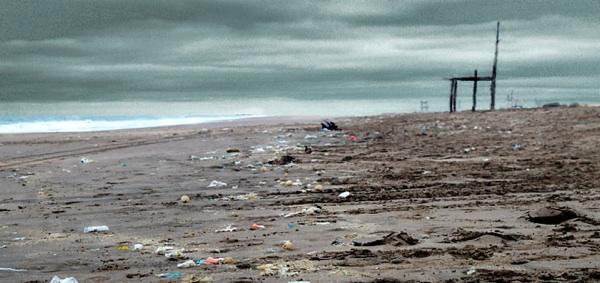 Contaminación Por Plásticos En Playas Bonaerenses