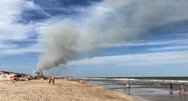 Un Voraz Incendió Destruyó Ocho Hectáreas De Bosques En Villa Gesell