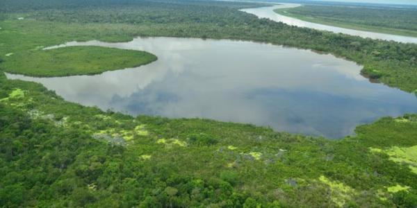 Las 142 Represas Que Ponen En Riesgo La Cuenca Amazónica
