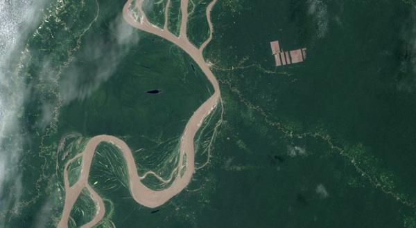 La Deforestación Aumenta El Impacto De La Radiación Solar En La Superficie Terrestre