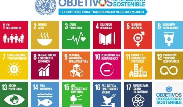 Las Empresas Hablan: La Sostenibilidad No Es Sólo Márketing