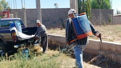 Agroquímicos En Mendoza: Las Consecuencias Del Uso Sin Control