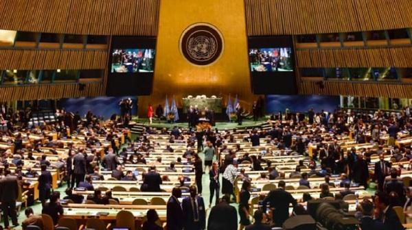 Grupo Insud Se Sumó A Pacto Global De Naciones Unidas