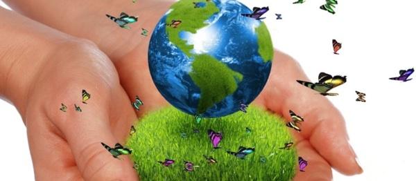 La Transición A Una Economía Verde Puede Crear 24 Millones De Empleos En 2030
