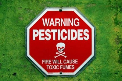 Relacionan La Exposición A Polvo Orgánico, Humos Y Pesticidas Con Más Riesgo De EPOC