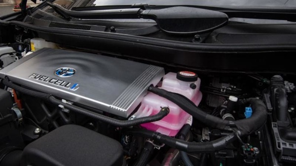 Toyota Generará Hidrógeno A Partir Del Estiércol De Vaca