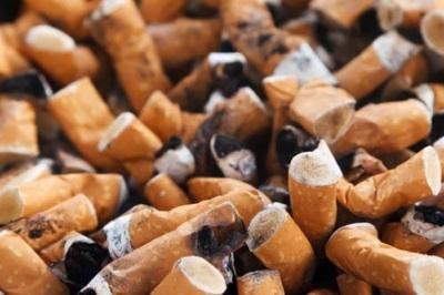 Celulosa Para Fabricar Papel A Partir De Colillas De Cigarrillos