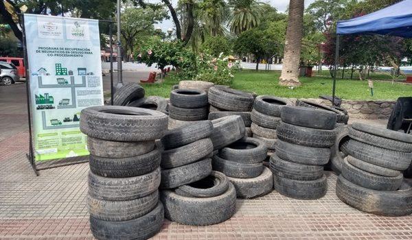 """Más De 700 Neumáticos Fuera De Uso Fueron Recuperados En Un Nuevo """"Neumatón"""" En Jujuy"""