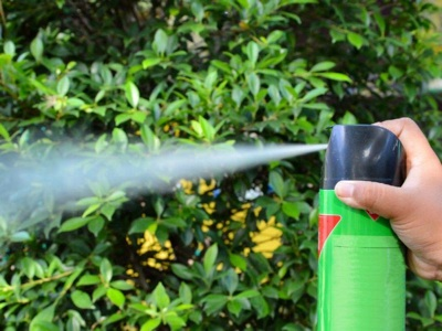 Objetos De Uso Cotidiano Generan Impactos Al Ambiente