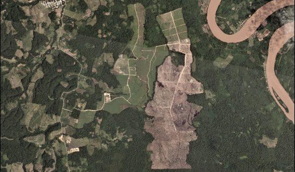 Una Esperanza Para El Amazonas: Imágenes Satelitales Revelan Al Instante La Deforestación Ilegal