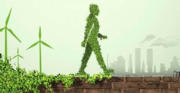 73% De Las Empresas Dice Incluir Criterios Sustentables En Sus Contratos