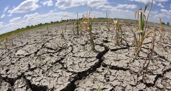 Centroamérica Pide Ayuda Internacional Por Efectos De Sequía