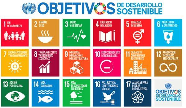 Guía Para La Acción Empresarial En Los ODS