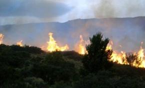 Sistema De Evaluación De Peligro De Incendio