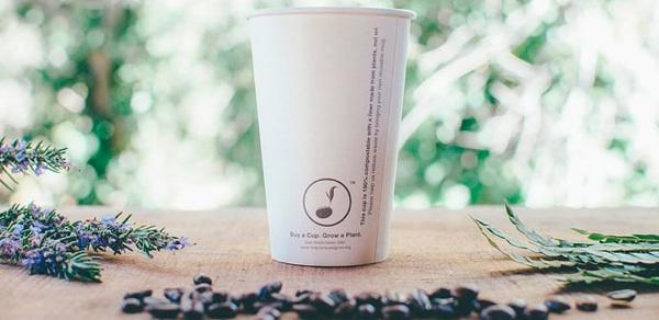 Primera Taza De Café Del Mundo Que Se Planta Y Repone La Flora Local