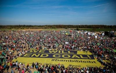 En Alemania Celebran El Rescate De Un Bosque Milenario