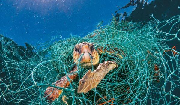 La ONU Y Europa Crean Una Plataforma Para Luchar Contra El Plástico