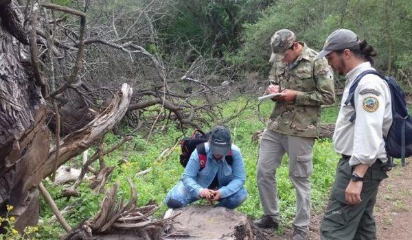 Chaco: Concretaron Un Operativo Contra La Tala Ilegal De Algarrobos En El Impenetrable